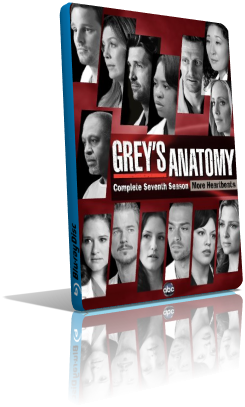 Grey's Anatomy - Stagione 7 (2011) (Completa) LD WEBRip ITA MP3 Avi
