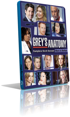 Grey's Anatomy - Stagione 6 (2010) (Completa) LD HDTV ITA MP3 Avi