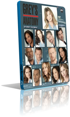 Grey's Anatomy - Stagione 9 (2013) (Completa) LD WEBRip ITA MP3 Avi