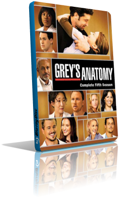 Grey's Anatomy - Stagione 5 (2009) (Completa) LD HDTV ITA MP3 Avi