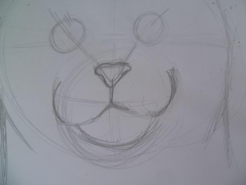 Katzenkopf Mit Bleistift Zeichnen