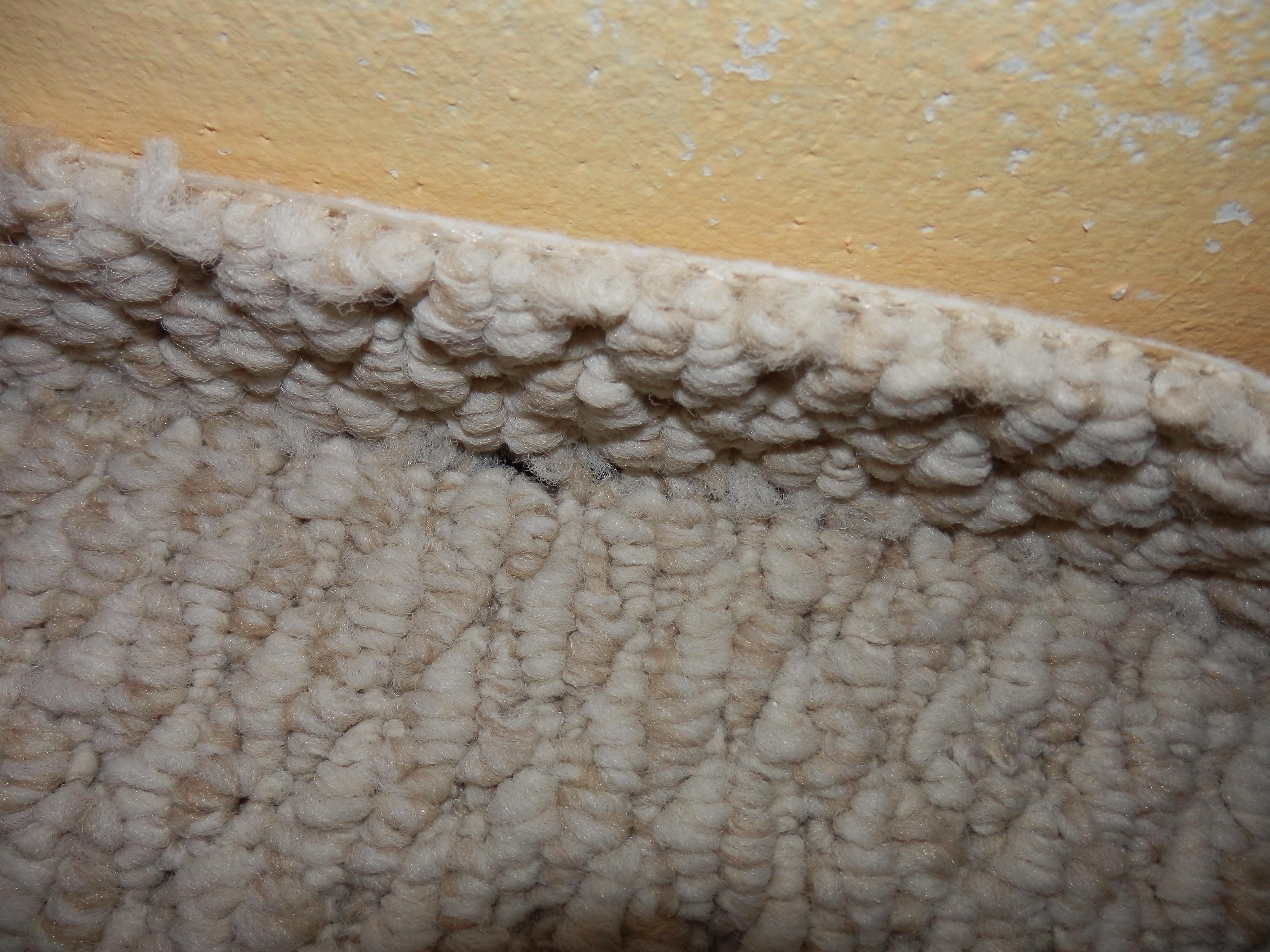 Schock Beim Teppich Entfernen Haustechnikdialog
