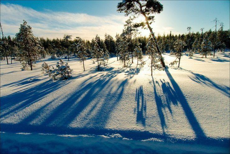 Zimowe krajobrazy 28