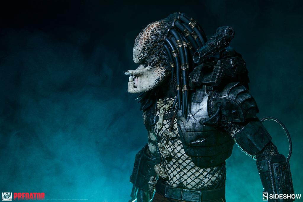 [Bild: predator-jungle-hunte16a5j.jpg]