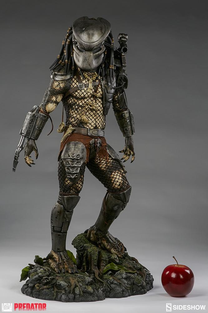 [Bild: predator-jungle-huntexwz7q.jpg]