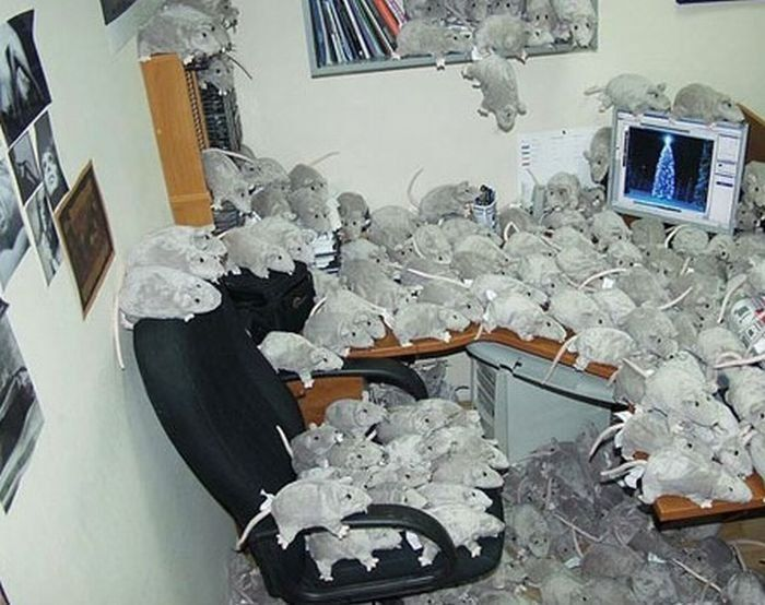 Żarty w biurze 15
