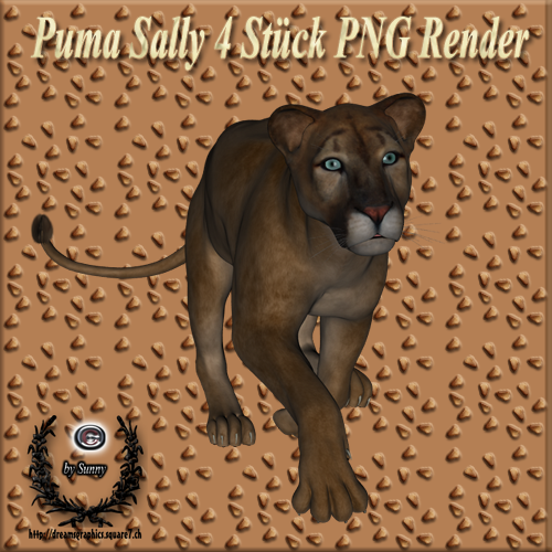 Puma Sally Poser Set