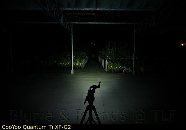 quantumtiujs4v1ajx1.jpg