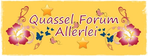 Quassel Forum Allerlei