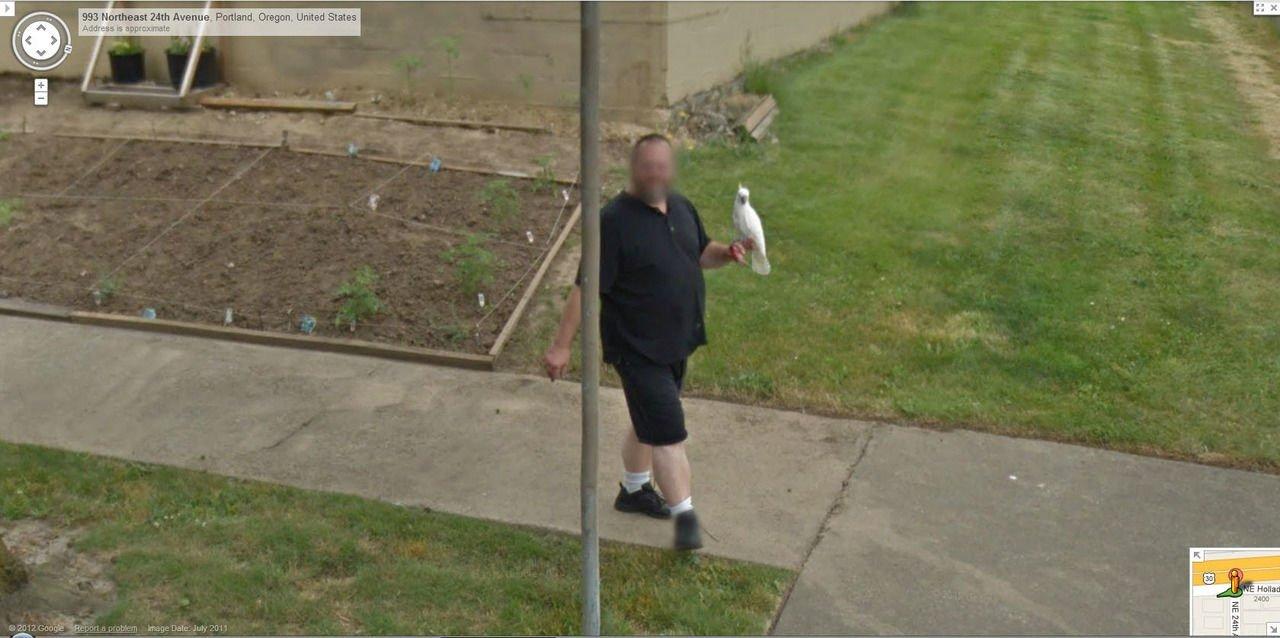 Nietypowe sceny z Google Street View #2 13