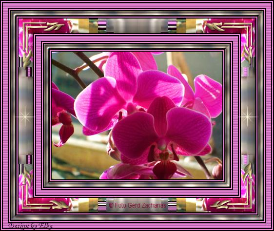 An den Beitrag angehängtes Bild: http://abload.de/img/rahmenzebrat8uzh.jpg