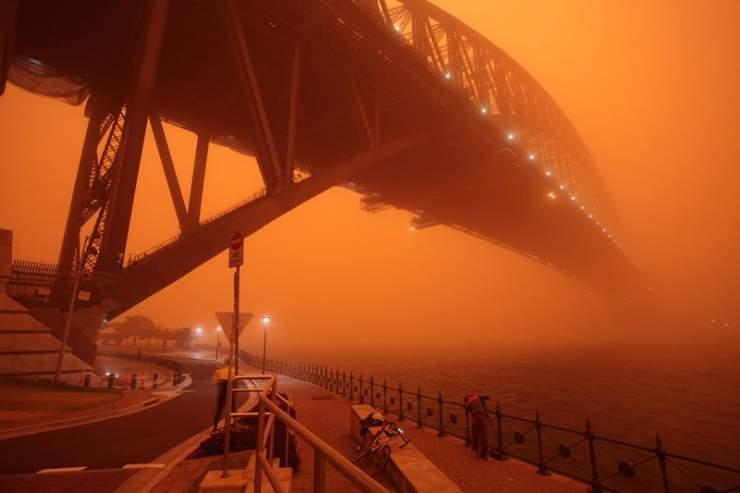 Pomarańczowe Sydney 5