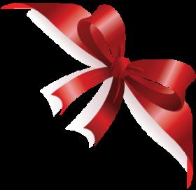 ribbon_pngkurdaleler-svsrw.png