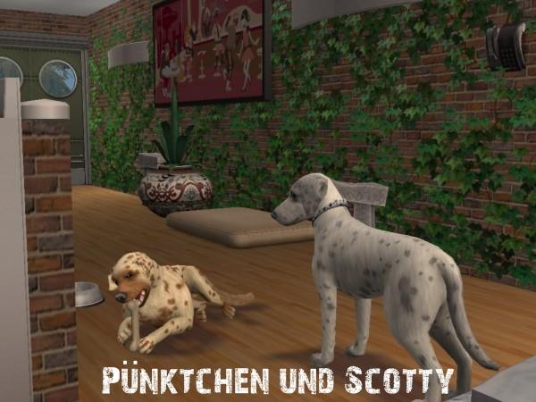 scottyundpnktchen6lucf.jpg