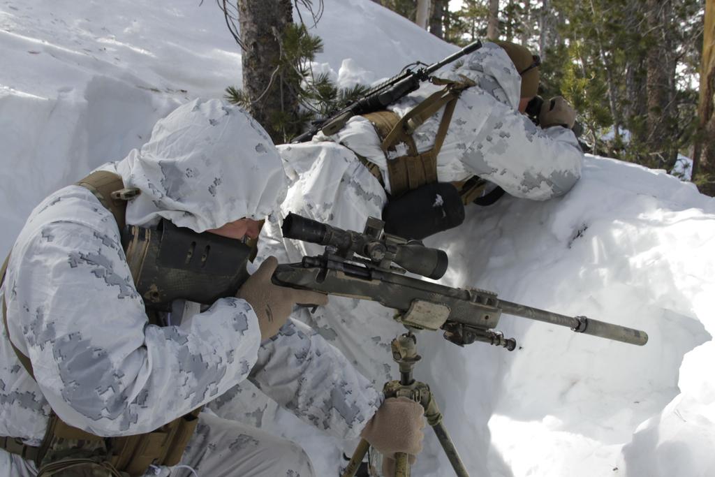 scout_sniper_snow_martzsk3.jpg