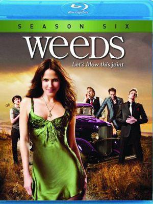 Weeds - Stagione 6 (2010) (Completa) BDMux 720P ITA SPA AC3 x264 mkv