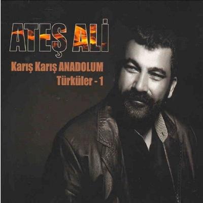 shvrq5skhr80 Ali Ateş   Karış Karış Anadolum Türküler 1 (2014)