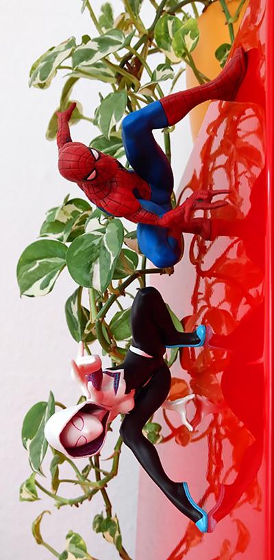 [Bild: spider-gwenmeu1g.jpg]