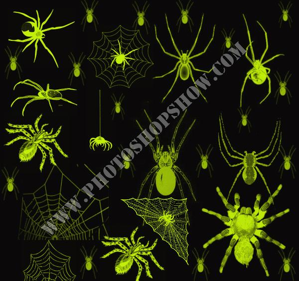 photoshop örümcek fırçaları