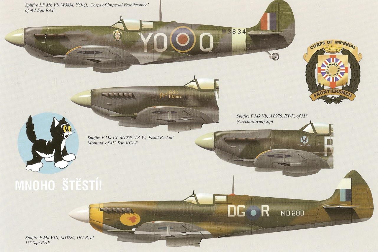 spitfires-1uauco.jpg