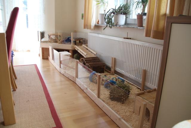 in welchem raum stehen die gehege bei euch meerschweinchen allgemeines. Black Bedroom Furniture Sets. Home Design Ideas