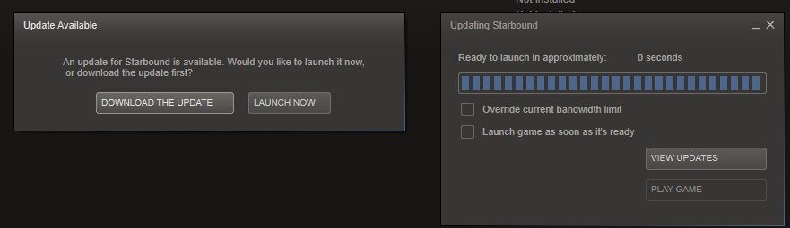 Playing a steam game without updating