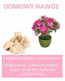 stylowi_pl_diy-zrob-trsu2w.png