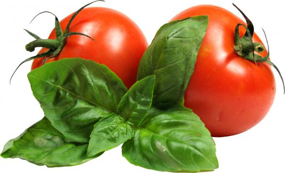 Пнг томат 5
