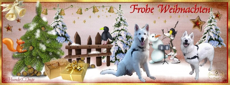 Gästebuch Banner - verlinkt mit http://weihnachtszeit.hunde-homepage.com