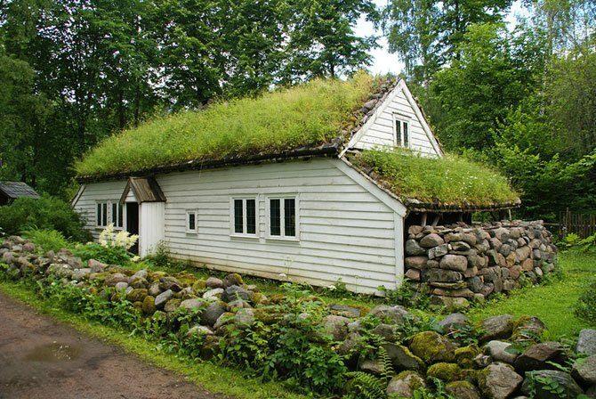 Zielone dachy w Norwegii #2 16