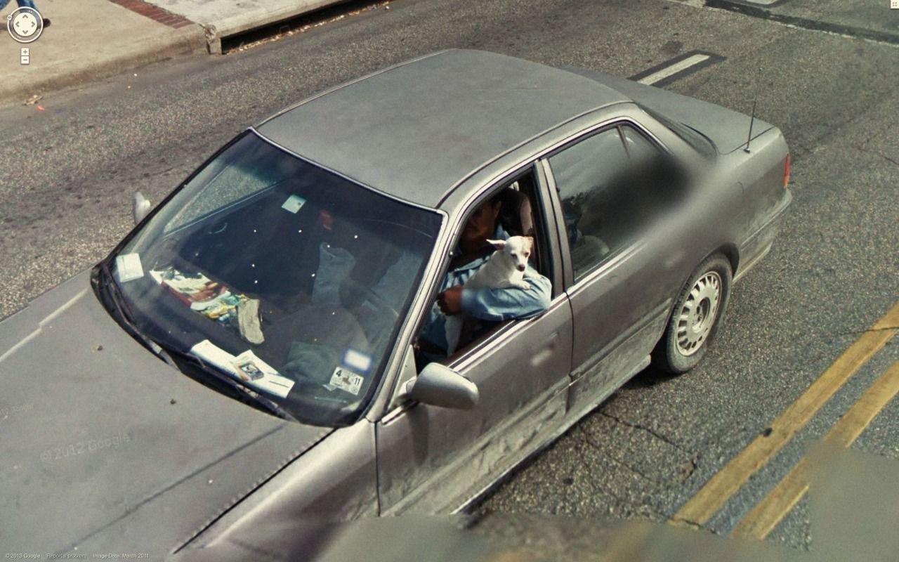 Nietypowe sceny z Google Street View #4 32