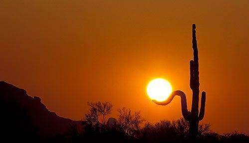 Złapać słońce 12