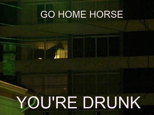 Wracaj do domu, jesteś pijany 21
