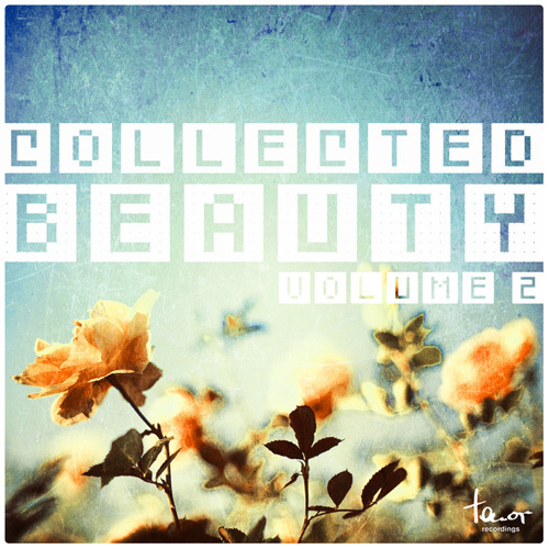 VA - Collected Beauty, Vol. 2 (2014)