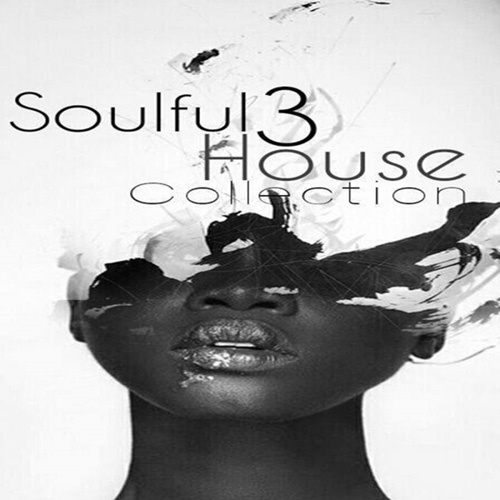 VA - Soulful House Collection, Vol. 3 (2014)