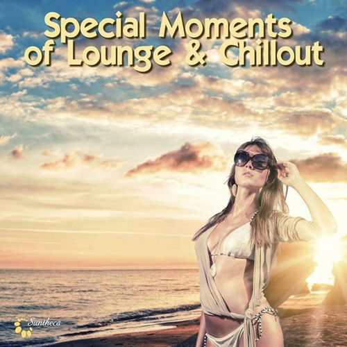 VA - Special Moments of Lounge & Chillout (2014)