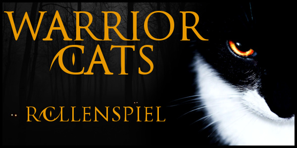 Warrior Cats Stories Wcatsdatei1gjjlv