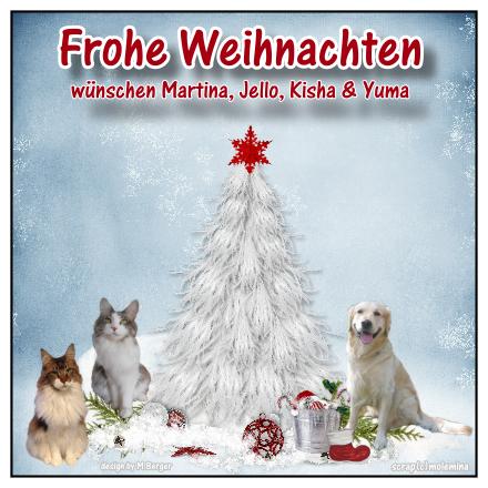 An den Beitrag angehängtes Bild: http://abload.de/img/weihnachten20169tqpo.png