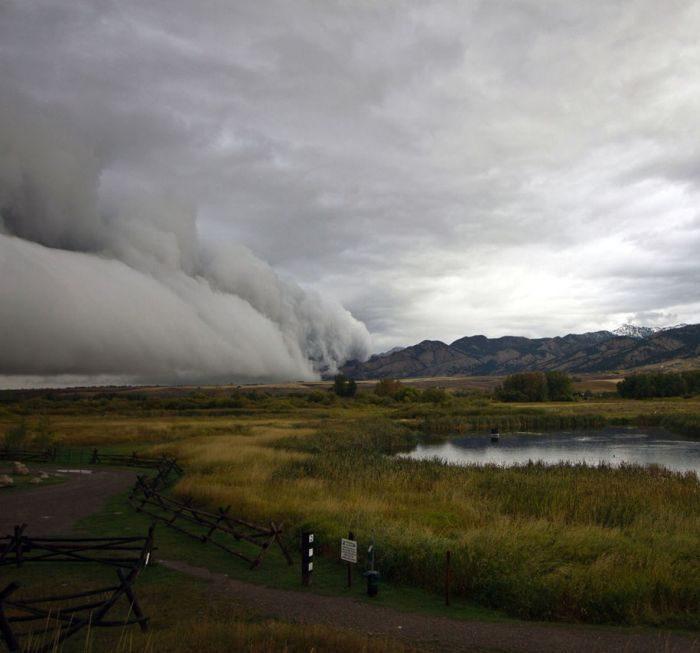 Chmury szelfowe 7