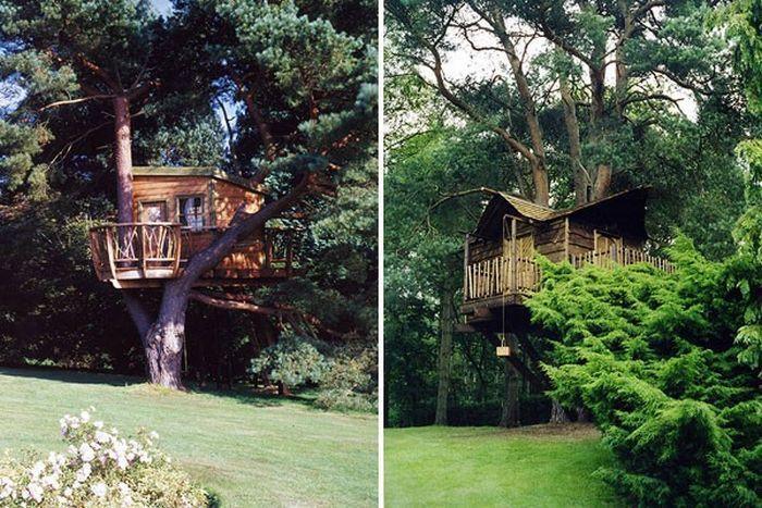Domki na drzewie 4