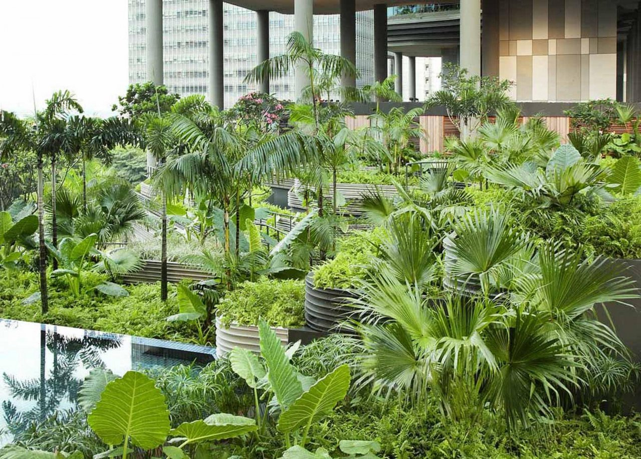 Ogród w centrum miasta 6