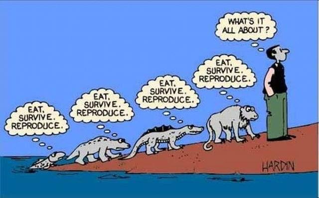 Ewolucja z przymrużeniem oka 30