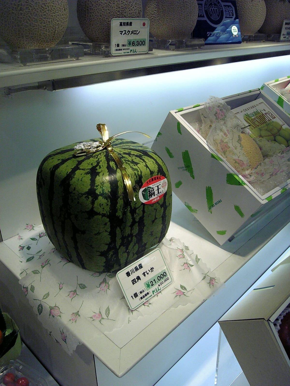 Tylko w Japonii #3 5