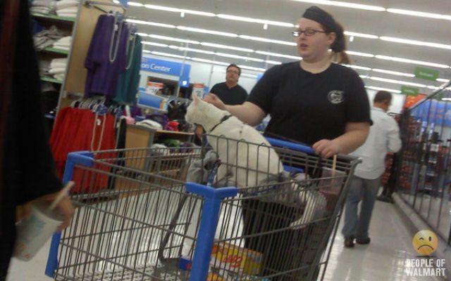 Najdziwniejsi klienci z WalMart #4 8