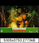 Хищник / Predator (Арнольд Шварценеггер / Arnold Schwarzenegger, 1987) 15768399438_87dcbd36b3vyw9
