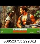 Хищник / Predator (Арнольд Шварценеггер / Arnold Schwarzenegger, 1987) 15770074177_c669cba78b4y97