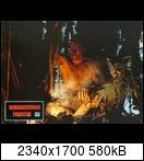Хищник / Predator (Арнольд Шварценеггер / Arnold Schwarzenegger, 1987) 15953852231_50b94072bqha5u