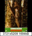 Хищник / Predator (Арнольд Шварценеггер / Arnold Schwarzenegger, 1987) 15955146812_ffe9e9581cwbkr
