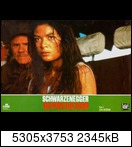 Хищник / Predator (Арнольд Шварценеггер / Arnold Schwarzenegger, 1987) 15955151432_b01918740qnx2a