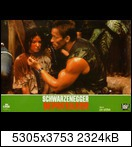Хищник / Predator (Арнольд Шварценеггер / Arnold Schwarzenegger, 1987) 15955794595_5eee54fabw9l97